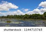 vegetation and lake in the neak ... | Shutterstock . vector #1144715765