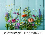 herbal and wildflowers on blue... | Shutterstock . vector #1144798328
