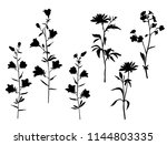 set of silhouettes of flowers... | Shutterstock .eps vector #1144803335