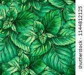 green mint foliage seamless... | Shutterstock . vector #1144812125