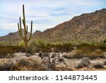 the sonora desert and san tan... | Shutterstock . vector #1144873445