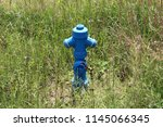 Small photo of Blue metal fire hydrant completely surrounded with fresh and dried tall uncut grass and other vegetation on colder sunny summer day