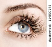 woman eye with extremely long... | Shutterstock . vector #114507196
