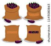vector illustration for bags... | Shutterstock .eps vector #1145080865