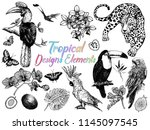 set of hand drawn sketch style... | Shutterstock .eps vector #1145097545