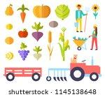 harvest person harvesting...   Shutterstock .eps vector #1145138648