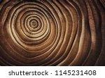 stump of tree felled   section... | Shutterstock . vector #1145231408