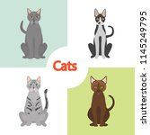 different cats breeds color... | Shutterstock .eps vector #1145249795