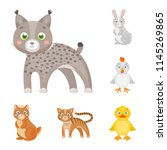 toy animals cartoon icons in...   Shutterstock .eps vector #1145269865