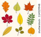 autumn leaves icon | Shutterstock .eps vector #114529948