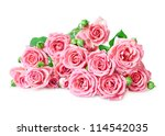 Stock photo pink roses on a white background 114542035