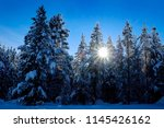 winter scene of snowy forest... | Shutterstock . vector #1145426162