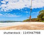 happy girl have fun swinging...   Shutterstock . vector #1145467988