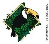 color pelican bird with exotic...   Shutterstock .eps vector #1145601002