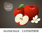 red delicious apples whole and...   Shutterstock .eps vector #1145605808