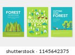 ecology information cards set.... | Shutterstock .eps vector #1145642375