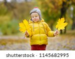 little child walking in the... | Shutterstock . vector #1145682995