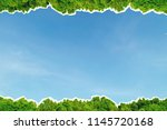 border concept of blue sky and...   Shutterstock . vector #1145720168