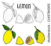 whole lemon  sliced pieces ... | Shutterstock .eps vector #1145784305
