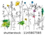 vector background with line... | Shutterstock .eps vector #1145807585