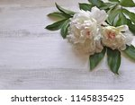 bouquet peonies with leaves ...   Shutterstock . vector #1145835425