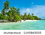 beautiful sandy beach in... | Shutterstock . vector #1145865035