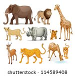 Illustration Of Animals In On A ...