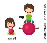 opposite big and small vector... | Shutterstock .eps vector #1145955122