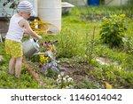 adorable little child helping... | Shutterstock . vector #1146014042