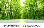 asphalt road and green tree in... | Shutterstock . vector #1146070928