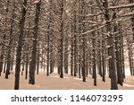 Winter Landscape Eastern...