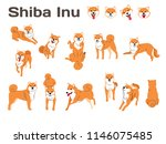 shiba inu illustration dog...   Shutterstock .eps vector #1146075485
