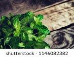 mint leaves. peppermint of mint ... | Shutterstock . vector #1146082382