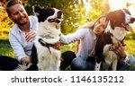Stock photo beautiful couple cuddling and walking dogs outdoors 1146135212