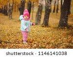 cute happy girl in autumn park | Shutterstock . vector #1146141038