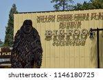 Willow Creek  Ca Usa   7 4 18 ...