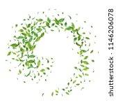 green flying or falling off... | Shutterstock .eps vector #1146206078