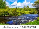 summer green nature river...   Shutterstock . vector #1146239918