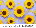 Sunflower pattern background on ...