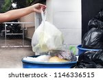 hand is carrying waste plastic... | Shutterstock . vector #1146336515