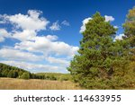 natural landscape in a sunny... | Shutterstock . vector #114633955