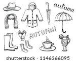 set of hand drawn autumn... | Shutterstock . vector #1146366095