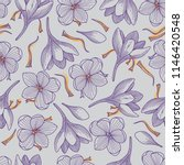 Detailed Purple Crocus Flowers...