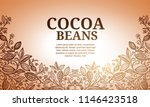 cacao beans plant  vector... | Shutterstock .eps vector #1146423518