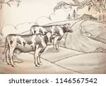 engraving style dairy cattle... | Shutterstock .eps vector #1146567542