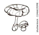 forest mushrooms. outline...   Shutterstock .eps vector #1146615398
