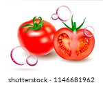 vector realistic image of a... | Shutterstock .eps vector #1146681962