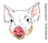 vector illustration of head of... | Shutterstock .eps vector #1146741992