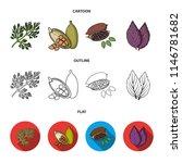 dill  cocoa beans  basil.herbs... | Shutterstock .eps vector #1146781682