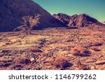 mountain desert landscape. dry... | Shutterstock . vector #1146799262